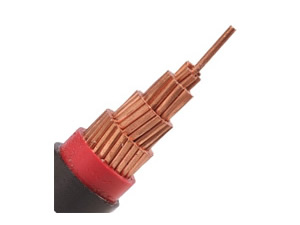 N2XY Cable( 0.6/1 kV CU/XLPE/PVC Power Cable)