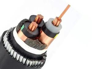 N2XSERY Cable( 6/10kV 8.7/15kV 12/20kV 18/30kV CU/XLPE/CTS/SWA/PVC Power Cable)